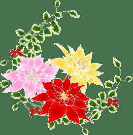 12月 花